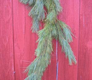 Fresh White Pine Christmas Garland